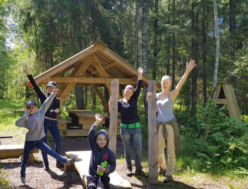 Hike in the Kämbla old-growth forest